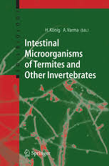 Intestinal microorganisms of termites and other invertebrates / H. Konig, A.Varma (eds.)